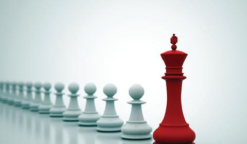 Leadership and Management Skills